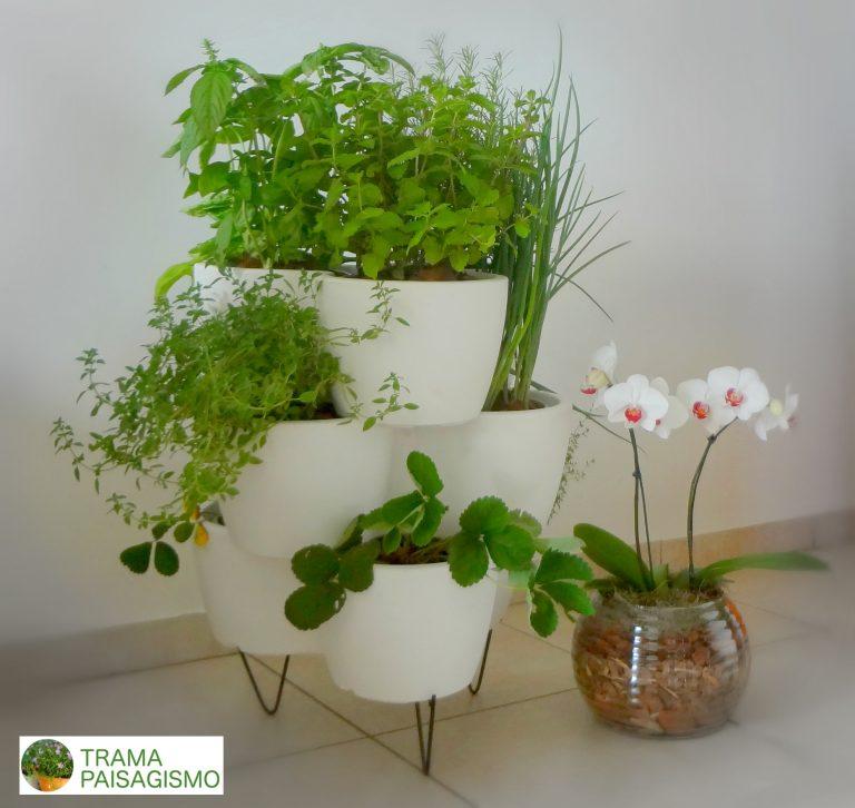 horta em apartamento espacos pequenos