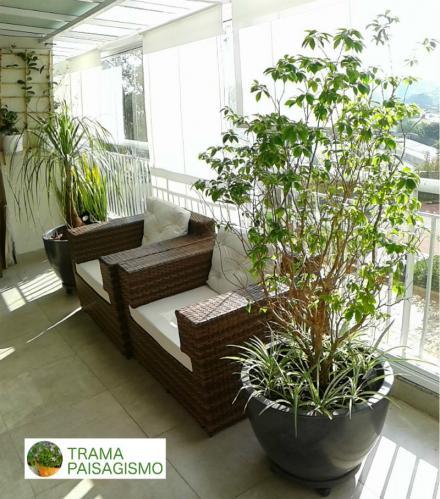 sacada_plantas_paisagismo1